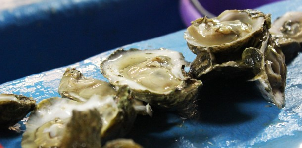 Shucked, Ready-to-Eat Oysters