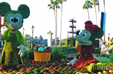 Epcot Flower and Garden Festival  Mickey and Minnie