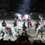 Medieval Times Horse Demonstration