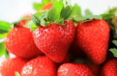 Wishing Star Strawberry Variety from the FSGA