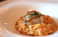 urban-tide-diver-scallops