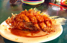 grills_lionfish_cape_canaveral_florida